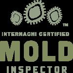 Mold Inspection Trenton