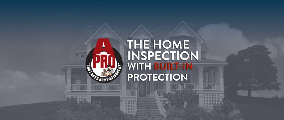 Exterior Home Inspection in Trenton